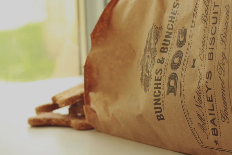 Bunches & Bunches - Branding & Packaging