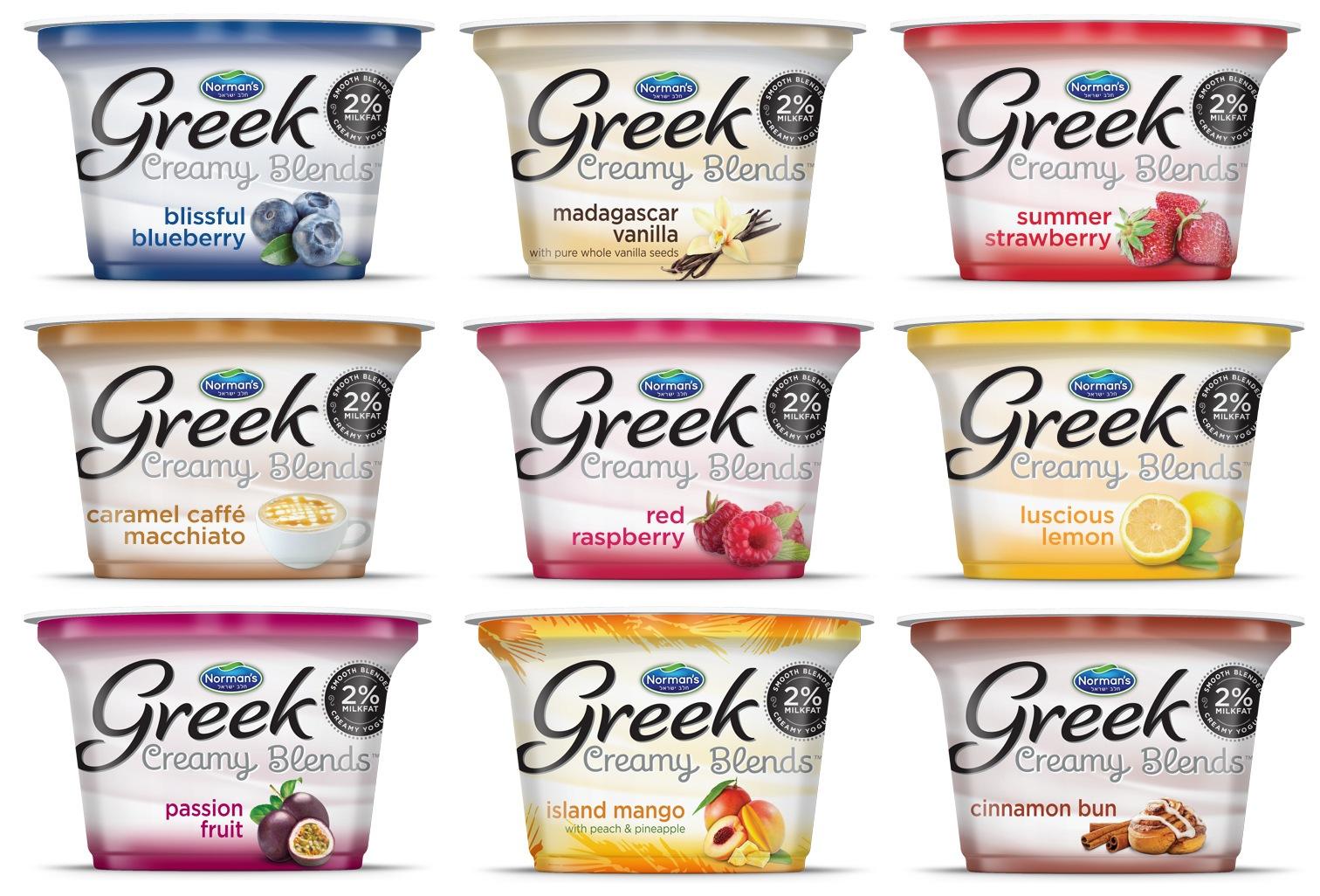 Normans Creamy Blends Yogurt Branding