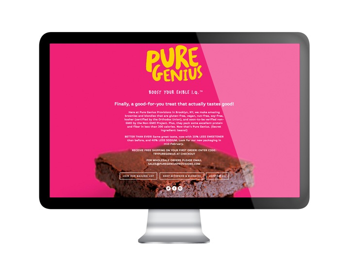 Pure Genius Website Design