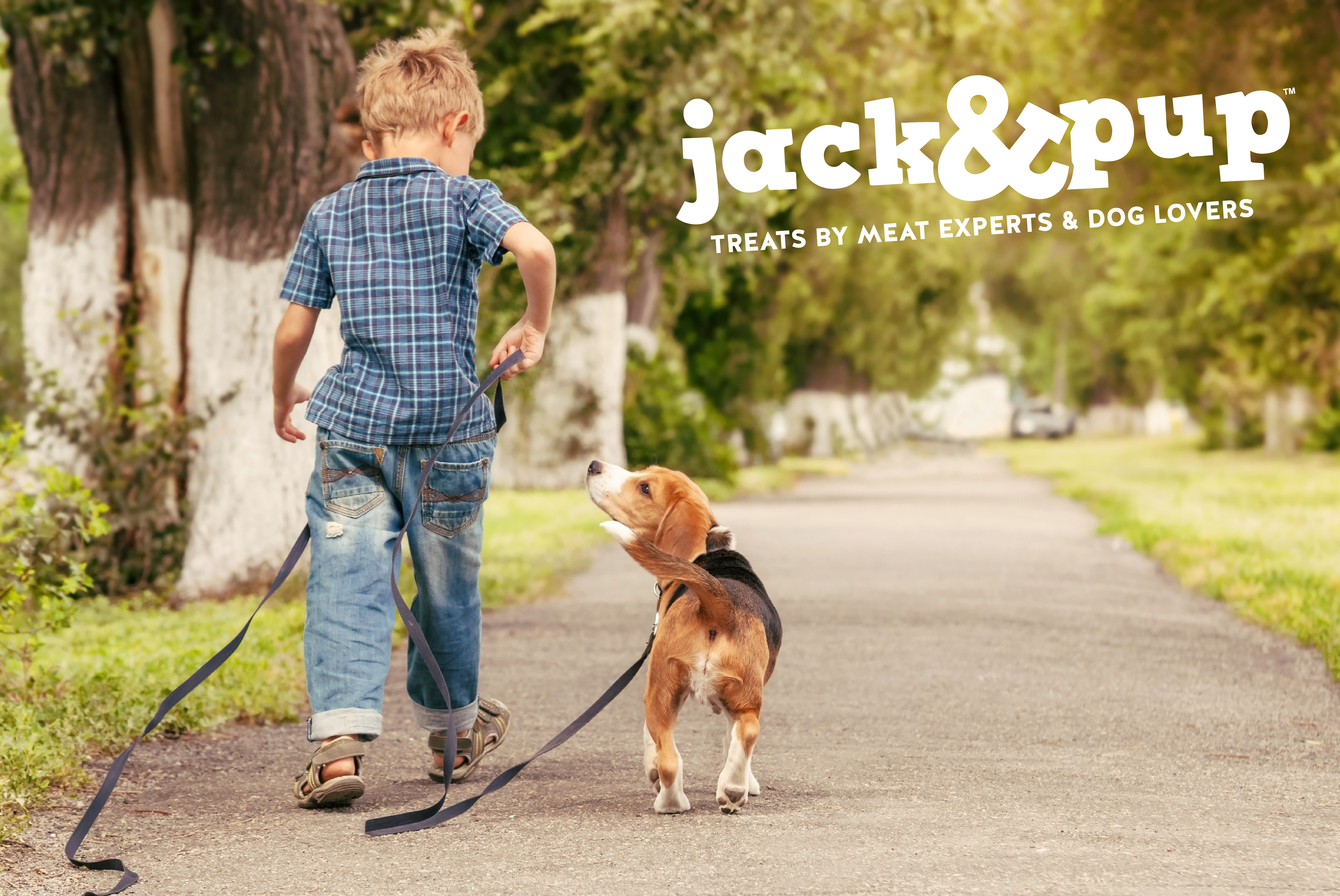 Jack and Pup Dog Treats Branding
