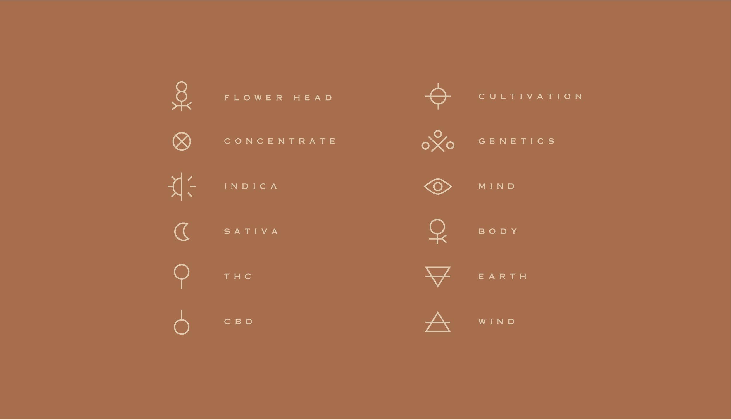 cannabis branding identity icon system